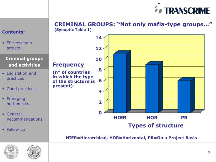 """CRIMINAL GROUPS: """"Not only mafia-type groups…"""""""