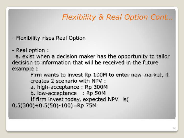 Flexibility & Real Option Cont…
