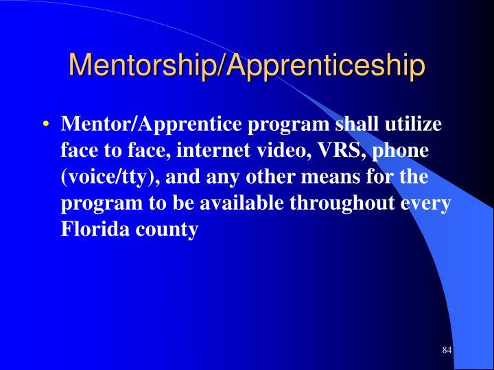 Mentorship/Apprenticeship