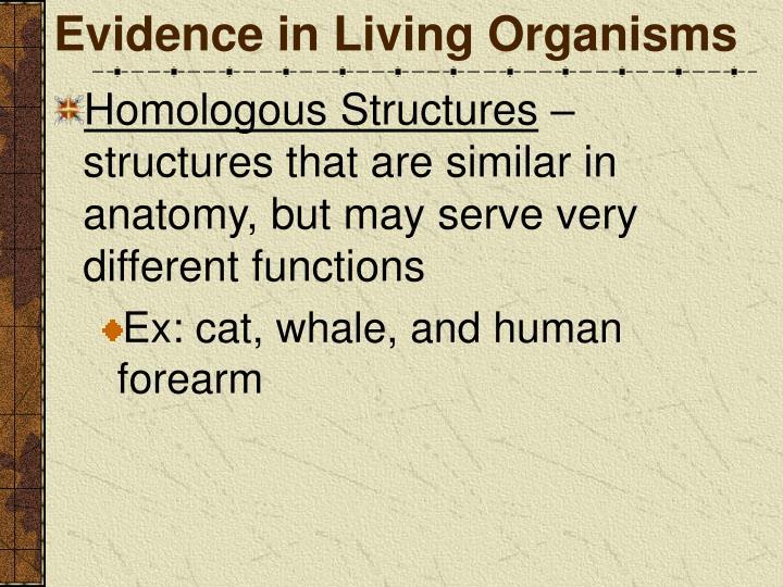 Evidence in Living Organisms