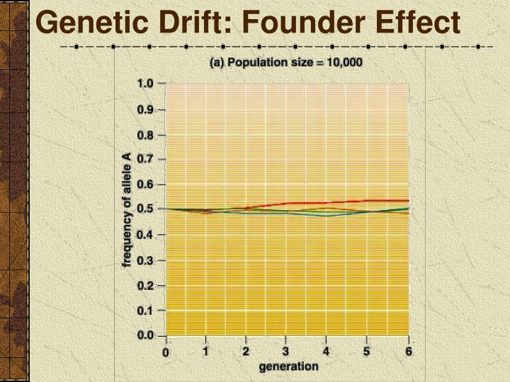 Genetic Drift: Founder Effect