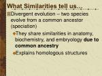 what similarities tell us1