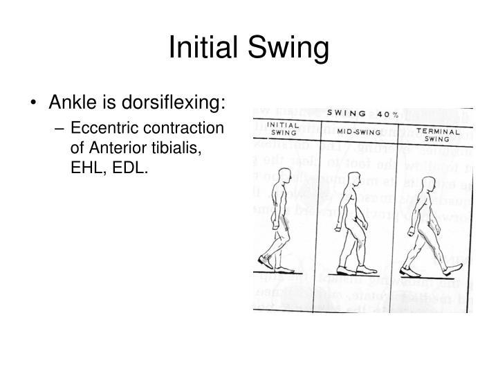 Initial Swing
