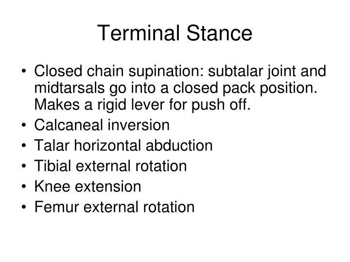 Terminal Stance