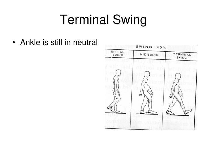 Terminal Swing