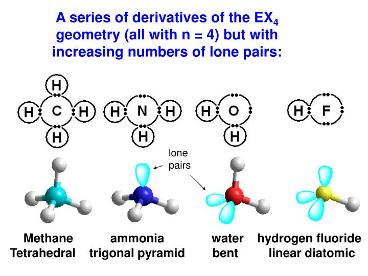 A series of derivatives of the EX