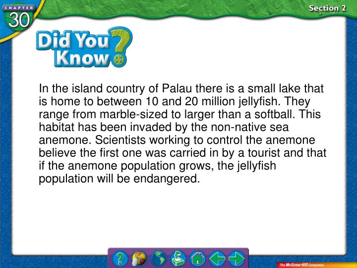In the island country of Palau there is a small lake that is home to between 10 and 20 million jellyfish. They range from marble-sized to larger than a softball. This habitat has been invaded by the non-native sea anemone. Scientists working to control the anemone believe the first one was carried in by a tourist and that if the anemone population grows, the jellyfish population will be endangered.