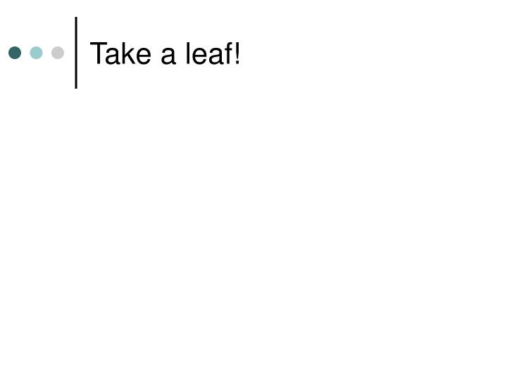 Take a leaf!