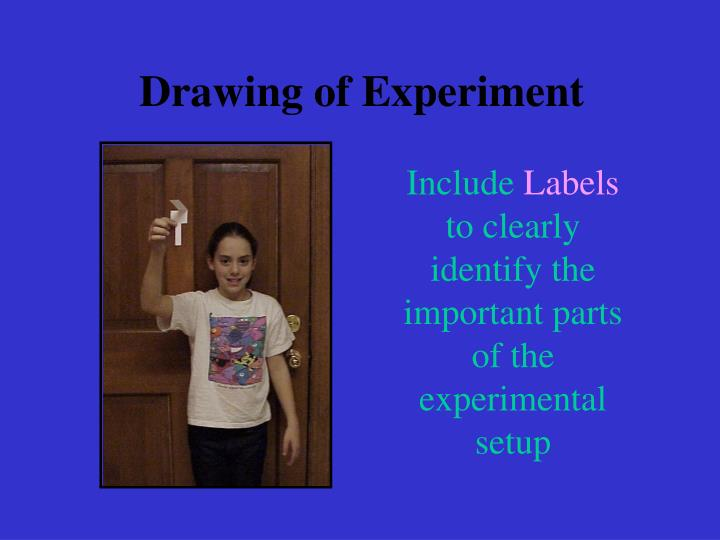 Drawing of Experiment