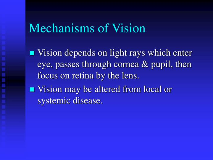 Mechanisms of Vision