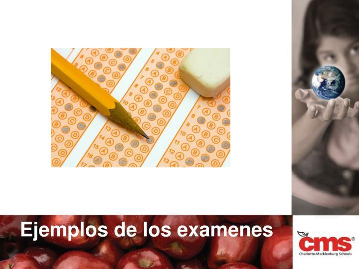 Ejemplos de los examenes