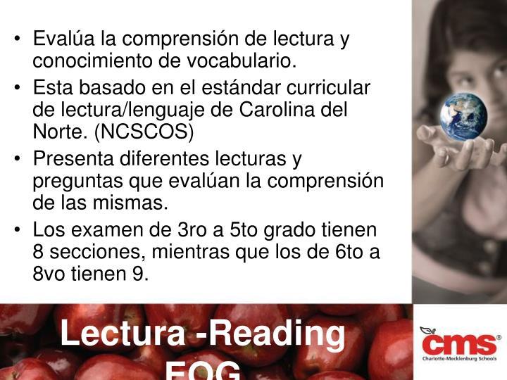 Evalúa la comprensión de lectura y conocimiento de vocabulario.