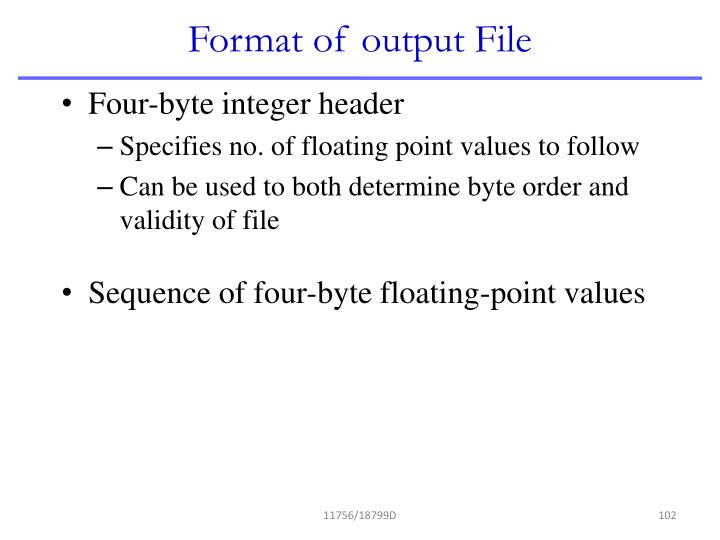 Format of output File