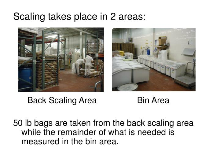 Scaling takes place in 2 areas: