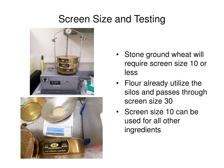 Screen Size and Testing