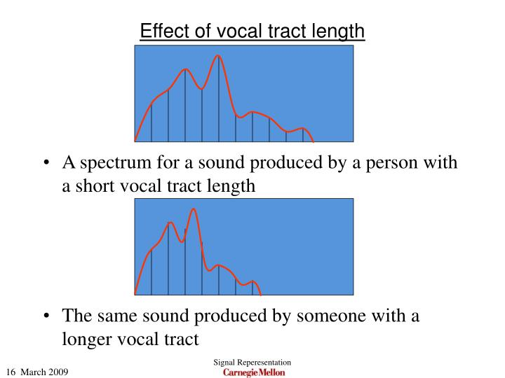 Effect of vocal tract length