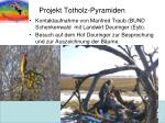 projekt totholz pyramiden