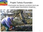 projekt totholz pyramiden1