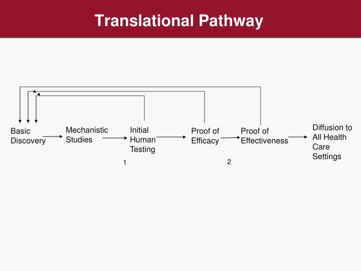 Translational Pathway