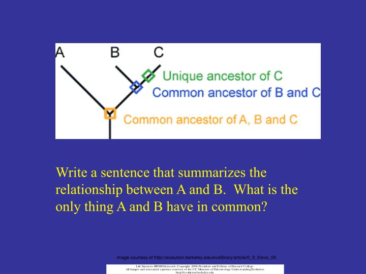 Write a sentence that summarizes the relationship between A and B.  What is the only thing A and B have in common?