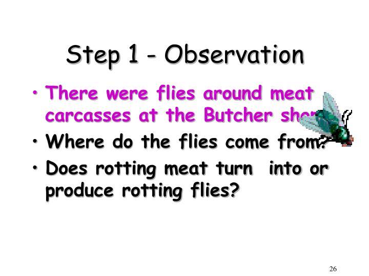 Step 1 - Observation