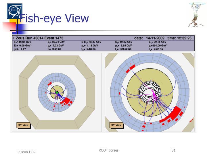 Fish-eye View