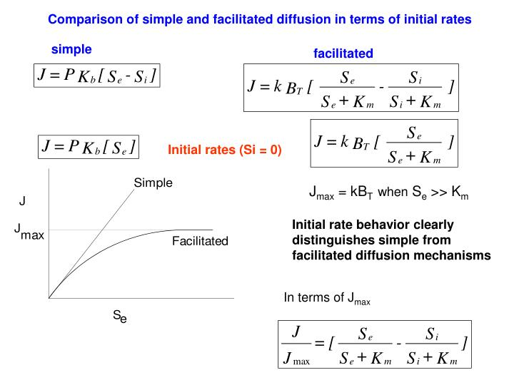 Comparison of simple and facilitated diffusion in terms of initial rates