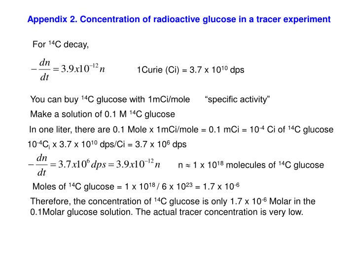 Appendix 2. Concentration of radioactive glucose in a tracer experiment