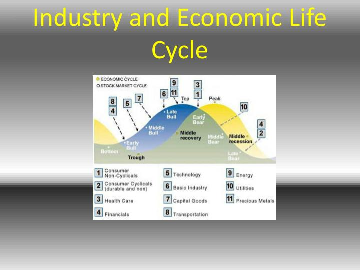 Industry and Economic Life Cycle