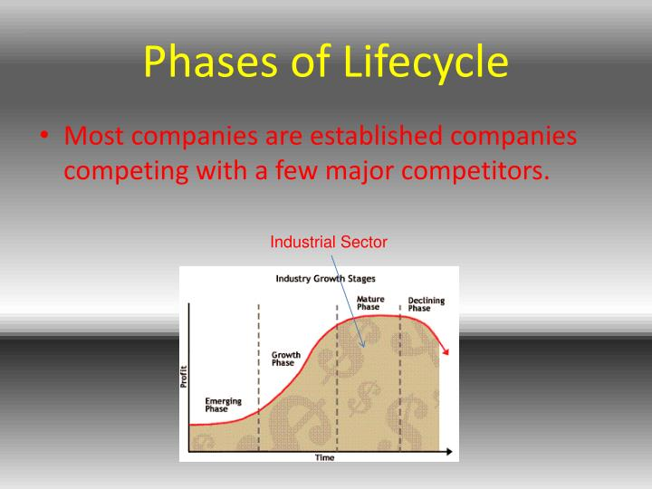 Phases of Lifecycle