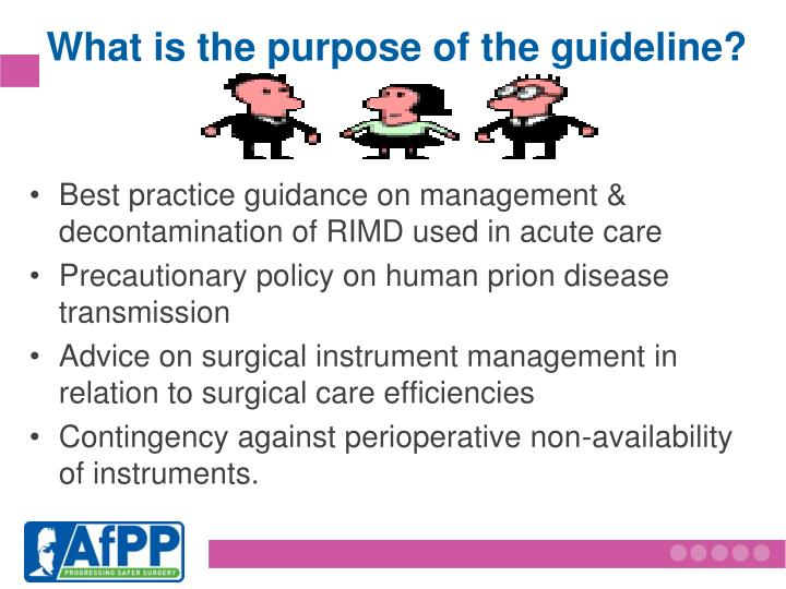 What is the purpose of the guideline?