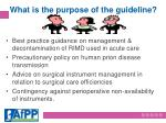 what is the purpose of the guideline