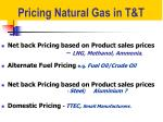 pricing natural gas in t t