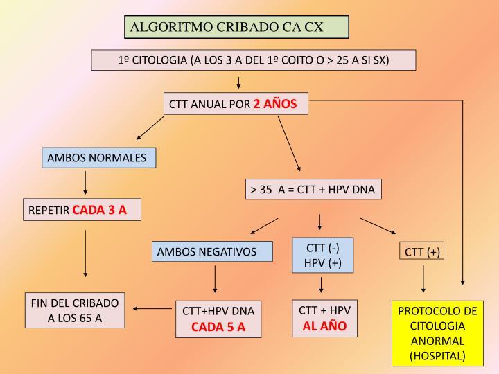 ALGORITMO CRIBADO CA CX
