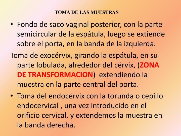 TOMA DE LAS MUESTRAS
