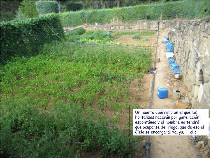 Un huerto ubérrimo en el que las hortalizas nacerán por generación espontánea y el hombre no tendrá que ocuparse del riego, que de eso el Cielo se encargará. Ya, ya.     clic