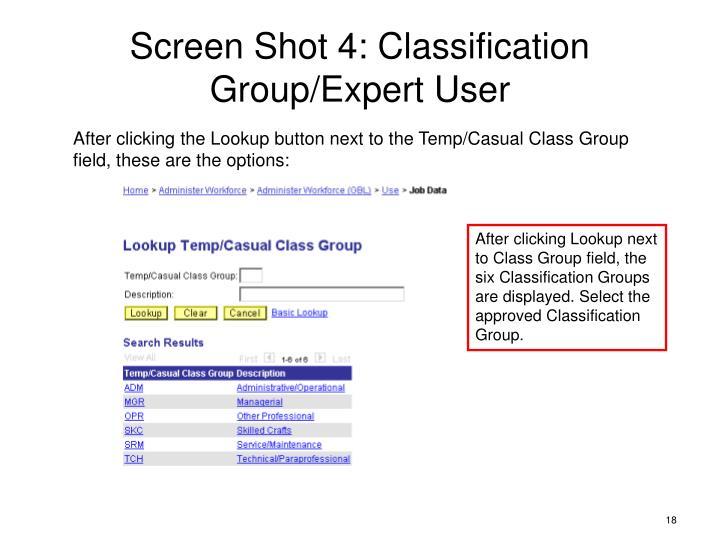 Screen Shot 4: Classification Group/Expert User