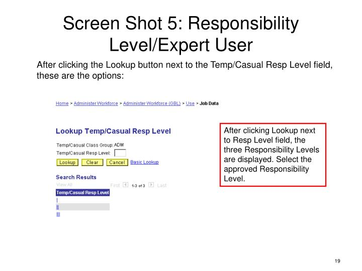 Screen Shot 5: Responsibility Level/Expert User