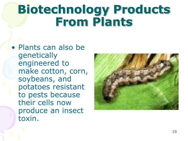 Biotechnology Products From Plants