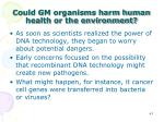 could gm organisms harm human health or the environment
