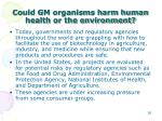 could gm organisms harm human health or the environment3