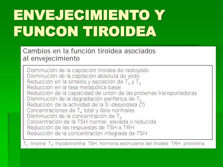 ENVEJECIMIENTO Y FUNCON TIROIDEA
