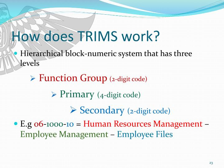How does TRIMS work?