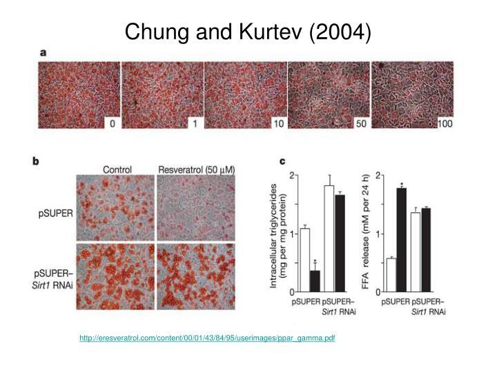 Chung and Kurtev (2004)
