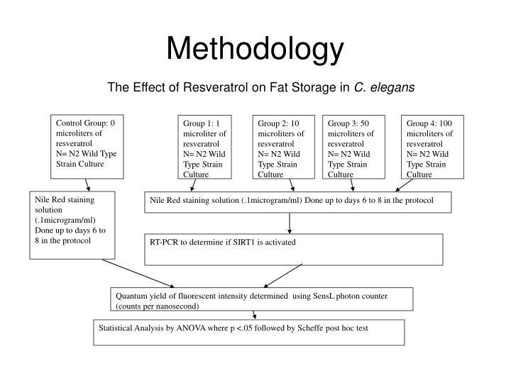 Control Group: 0 microliters of resveratrol