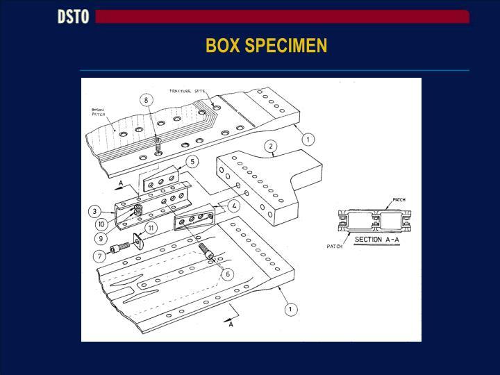 BOX SPECIMEN
