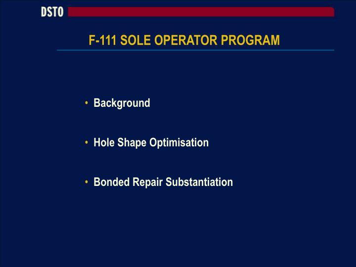 F-111 SOLE OPERATOR PROGRAM