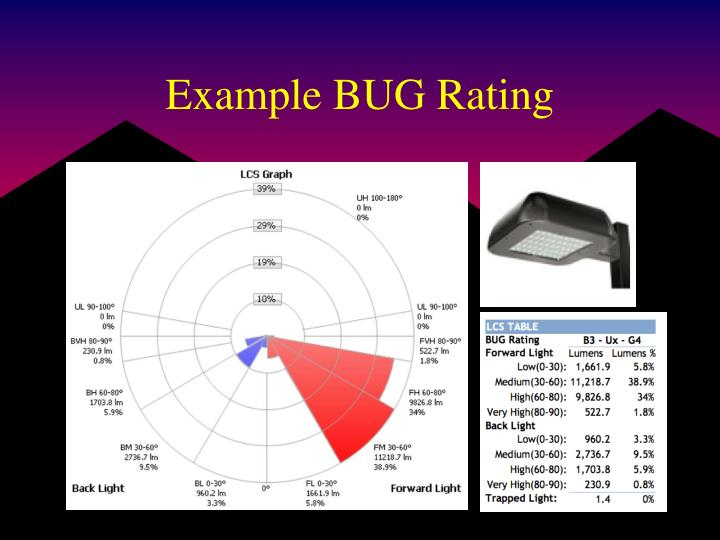 Example BUG Rating
