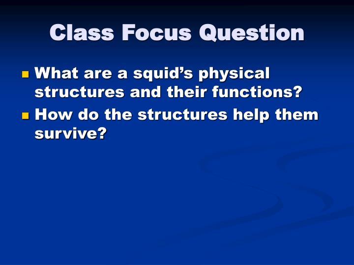 Class Focus Question