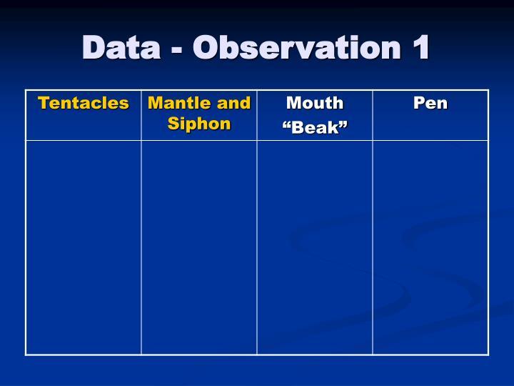 Data - Observation 1